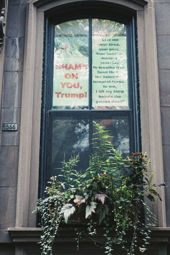 Shame on you Trump NYC NYC Photography New York New York City Shame West Village Architecture Building Building Exterior Built Structure Close-up Day Growth House Nature No People Outdoors Plant Shame On You Text Tree Trump Window