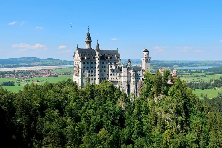 Neuschwanstein Castle in Germany Walt Disney Inspiration Germany Castle Architecture Sky Built Structure Plant Building Exterior Nature Growth History Travel