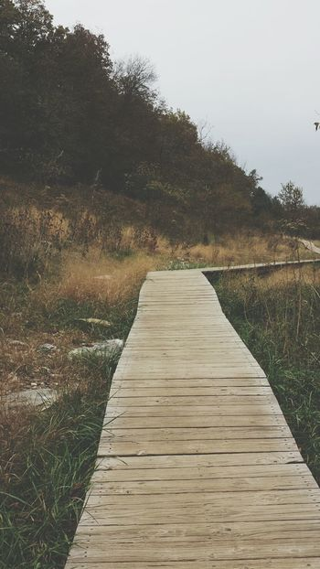 Always Exploring Boardwalk Eyeemnaturelover