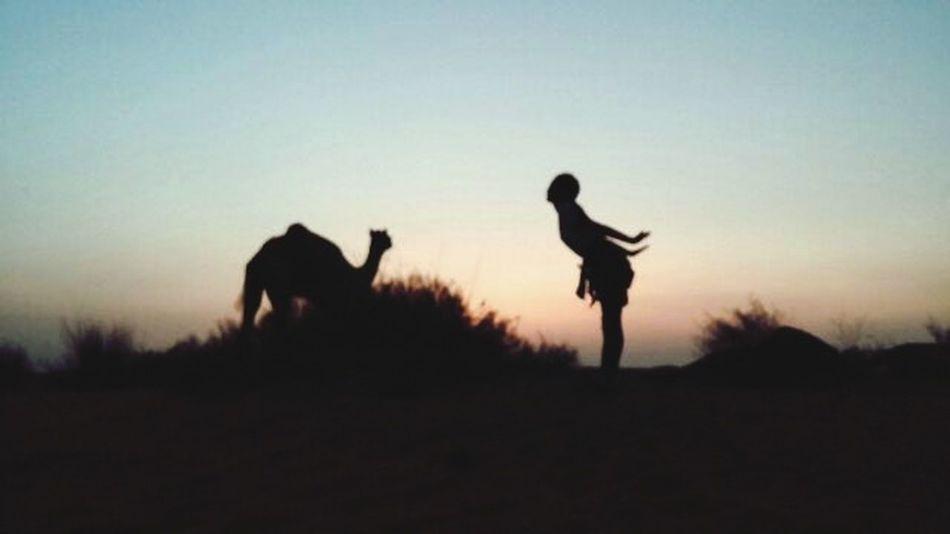 Jaisalmer Desert Camel Traveling Taking Photos That's Me Happy :) Hello India