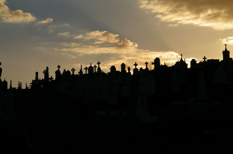 Tombstones at waverley cemetery during sunset