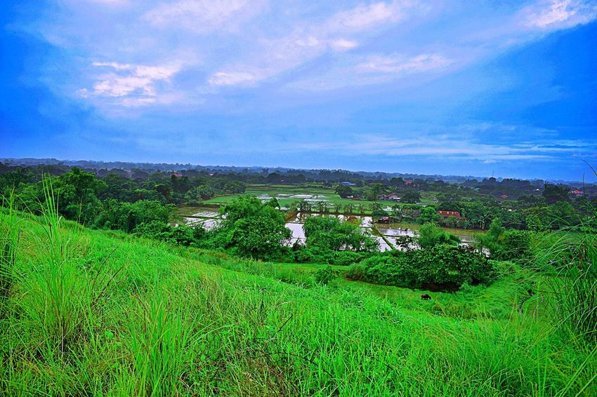 Eco Park Sta. Rita Pampanga Philippines Architecture Beauty In Nature Cloud - Sky Day Environment Field Grass Green Color Growth Land Landscape Nature No People Outdoors Plant Rural Scene Scenics - Nature Sky Tranquil Scene Tranquility Tree