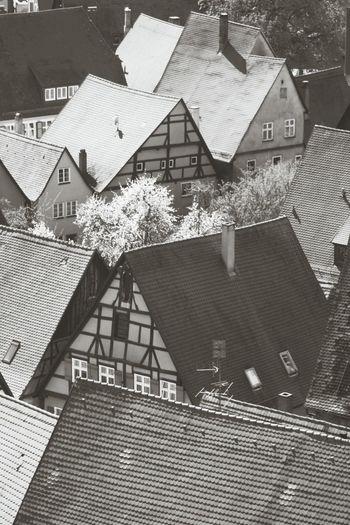 Black And White Rooftops Medieval Cityscapes Dinkelsbuhl