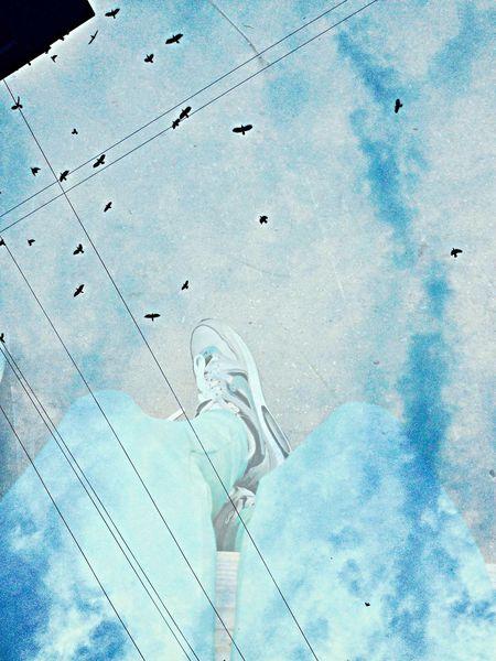 Iphoto Fly Blue Nike