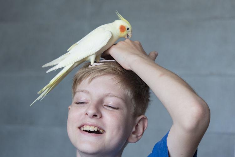 Portrait of boy holding bird