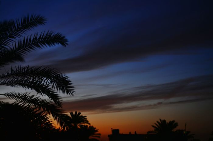 تصويري_نيكون نيكون Nikon D5200 Baghdad بغداد ❤