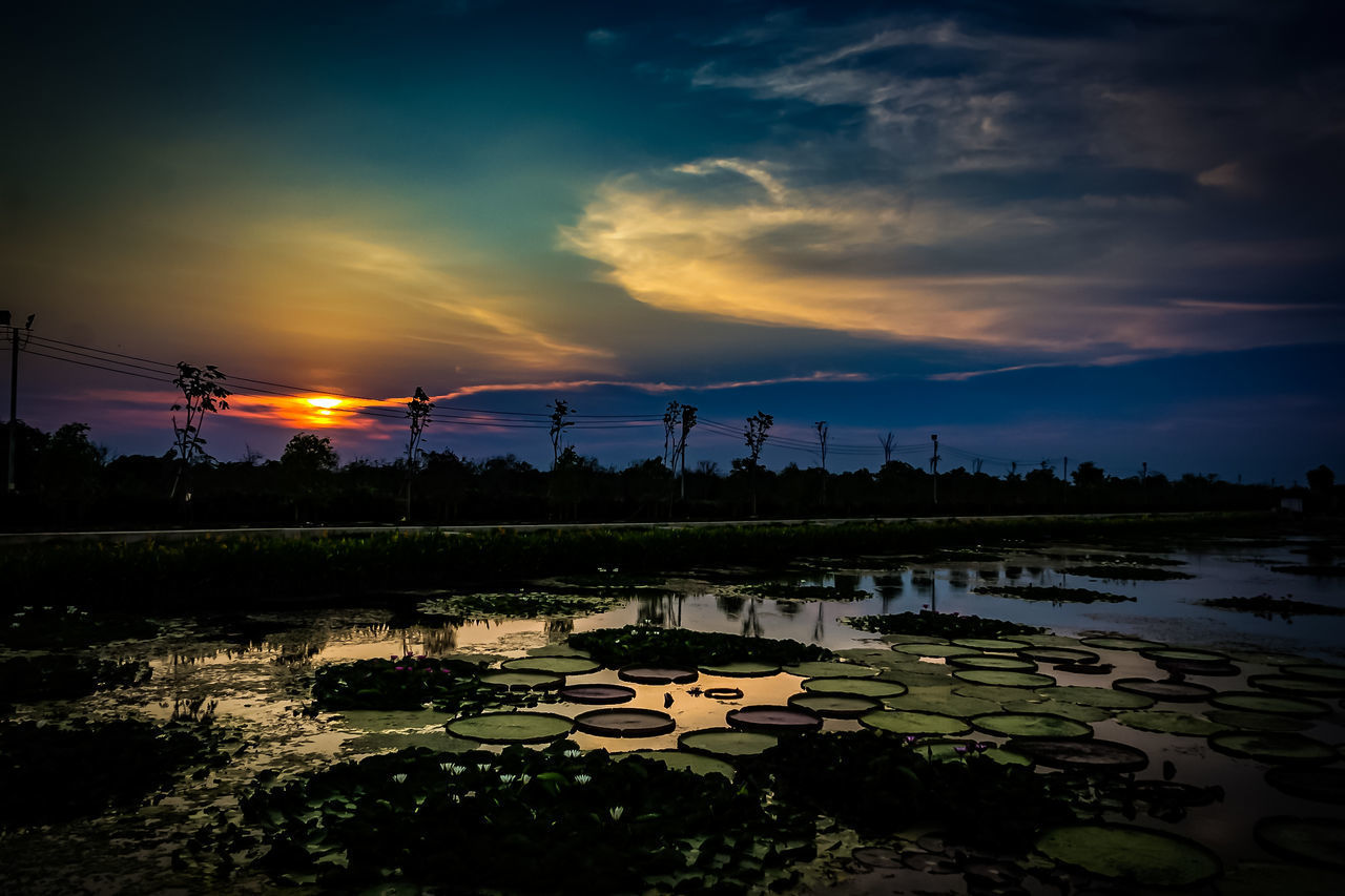 sky, sunset, water, cloud - sky, beauty in nature, scenics - nature, nature, reflection, tranquil scene, tranquility, no people, orange color, architecture, idyllic, outdoors, sun, built structure, plant, silhouette, swimming pool