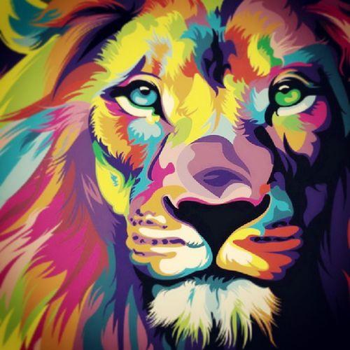 Lion Respect Strong Forze Imponerse Eyes Confianza Poder Instaleon