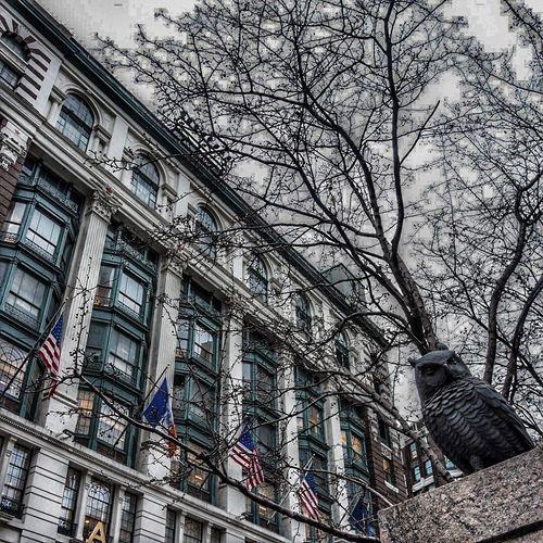 Greeley Square New York City Macys Owl Sculpture