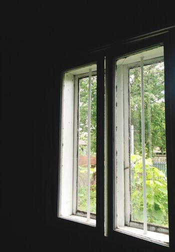 Escape gate Window Indoors  Day No People Architecture Nature Tree Close-up Eyeem Market EyeEm Gallery Jolene