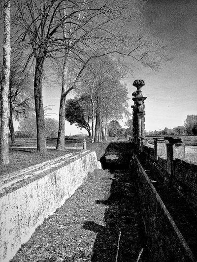 Chignolo Po, Marzo 2019 Blackandwhite Outdoors Castle Trees Sky Perspective