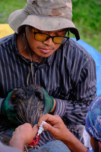 Two men are giving treatment to a sick chicken at the farm in malaysia.