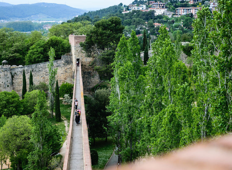 Old medieval Girona border Wall. Historic Wall built in Catlonia in a mountain surrounded by tres. Historical Building Wall Architecture Beauty In Nature Day History Landscape Medival Mountain Nature Outdoors Torusim Tree