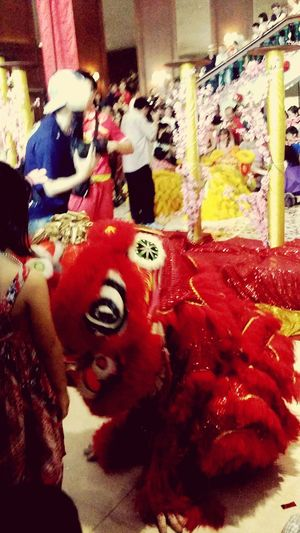 Lion Lion Dance Small Lion Chinese New Year Chinese Culture Singapore CNY CNY2017 Lion Costume Streetphotography Children Southeast Asia Singapore