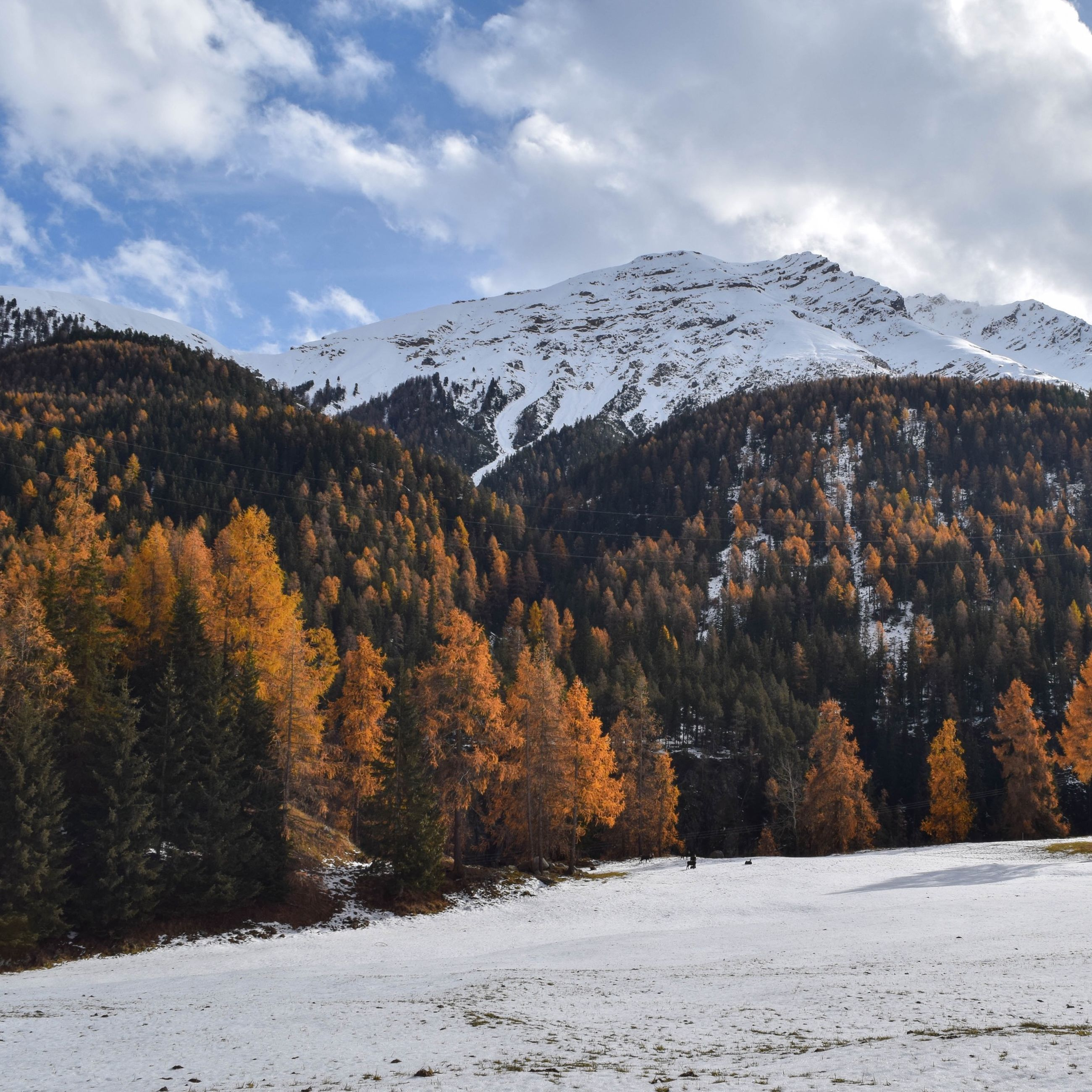 snow, winter, cold temperature, season, mountain, sky, tranquil scene, tranquility, weather, scenics, beauty in nature, tree, covering, landscape, nature, snowcapped mountain, cloud - sky, mountain range, non-urban scene, cloud