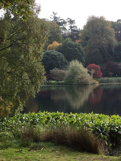 National Trust 🇬🇧 Nature No People Tree Tranquil Scene Tranquility Beauty In Nature Lake Scenics Outdoors Water