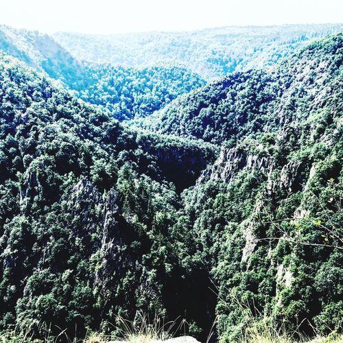 #hill Landscape