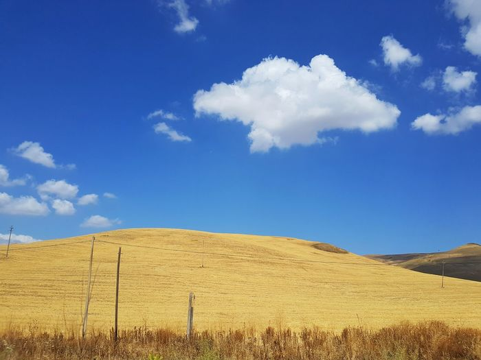 Minimalism Gold Colored Sicily Visititaly Desert Rural Scene Sand Dune Blue Agriculture Sky Landscape Cloud - Sky Arid Climate Plowed Field Arid Landscape Extreme Terrain Atmospheric Farmland Hill Physical Geography Cultivated Land Semi-arid