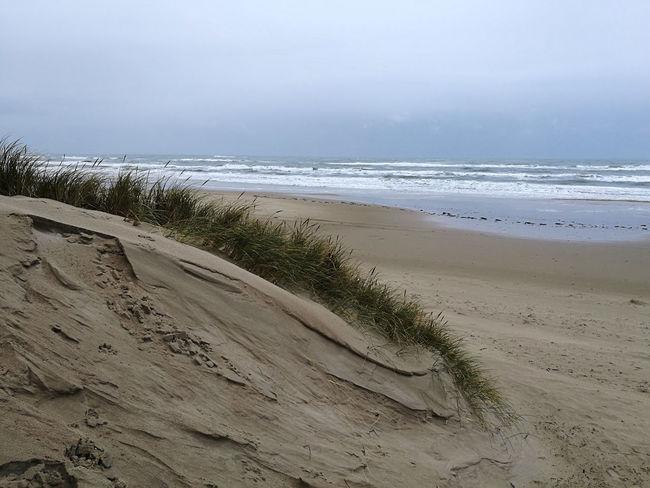 Løkken, Denmark North Sea Coast Coast Danmark Natur Dune Foggy Day Klit Løkken Marehalm Vesterhavet