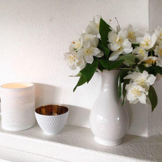 Hello World Beutiful Flowers The Purist (no Edit, No Filter) Enjoying Life At Home Sweden Schersmin Sweet Smell 😊🌸