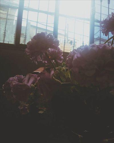 Flores Feliz dias das maes!! Felizdiasdamaes Mothersday Instaphoto Instabrasil Vscobest Vscobestpictures VSCOPH Vscobrasil Vscogood Vscogram Vsconature Vscogram Photo Photogram Flowers Flores House Casa