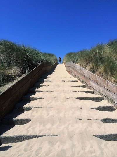 Tide is out, the Sand is in. Beauty In Nature Blue Clear Sky Day Full Length Grass Growth Leisure Activity Lifestyles Men Nature One Person Outdoors People Real People Rear View Shadow Sky Standing Sunlight The Way Forward Tree Walking Walkway Water