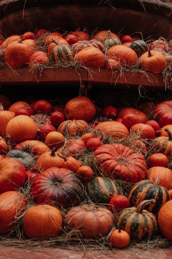 Thanksgiving holiday. halloween. lots of orange pumpkins in a hay. farmer's market. autumn harvest