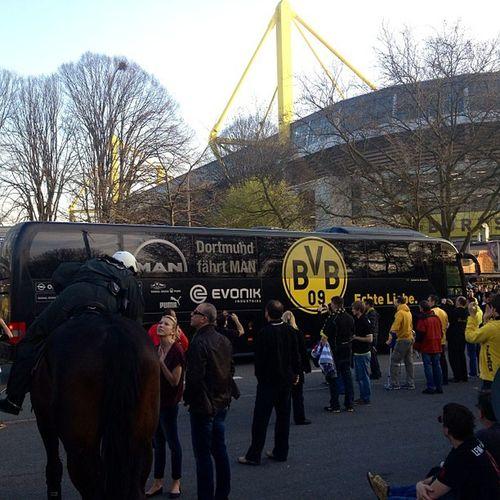 Die Mannschaft. #BvB #EchteLiebe #Dortmund #Madrid #Semifinal #ChampionsLeauge BvB Madrid Dortmund Semifinal Echteliebe Championsleauge