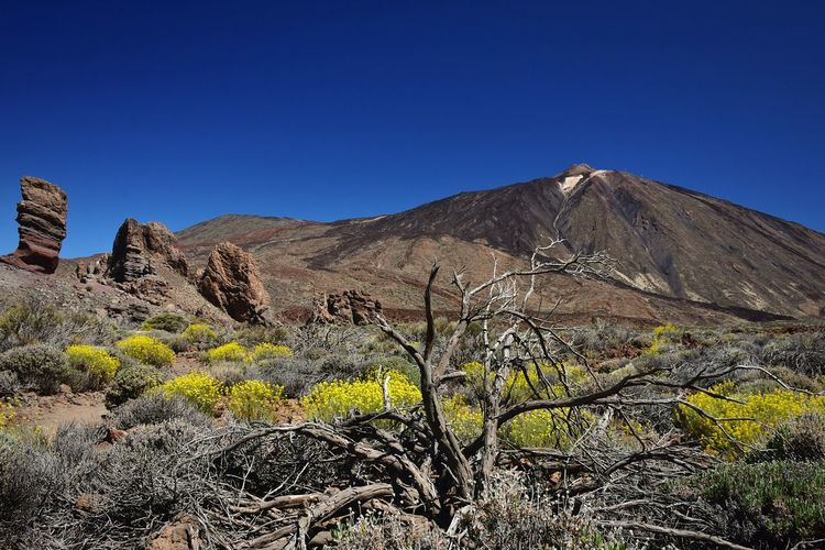 Volcano Outdoors Nature Day Mountain Sky Landscape No People Scenics Clear Sky Silhouette Hello World The Photographer Hera Travel Tenerife Hiking Popular The Great Outdoors Nature Photography EyeEm Nature Lover Volcanic Landscape Traveling Canary Islands Rock Formation Blue The Greatest View From Here