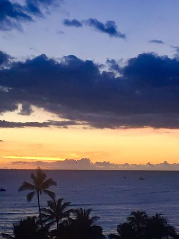 Pacific Sky Hawaii Clouds & Sky Hawaiian Sunset Pacific Sunset Pacific Ocean Sky Pacific Ocean View Island Of Oahu, Hawaii Palm Trees 🌴 Sky No People Silhouette An Eye For Travel