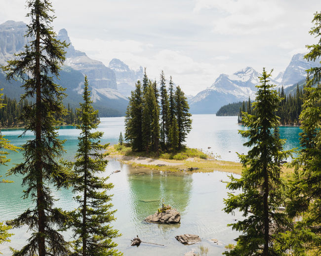 Spirit Island, Jasper National Park Coniferous Tree Pine Tree Outdoors Growth No People Idyllic Reflection Cloud - Sky Day Non-urban Scene Mountain Range Nature Sky Lake Tranquility Plant Tranquil Scene Scenics - Nature Beauty In Nature Water Tree Mountain