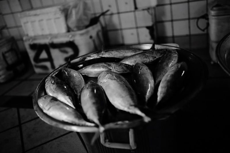 Bahrain Central Fish Market. Catch of the Day Bahrain Bahrain Tourism #canoneos6d No People Animal