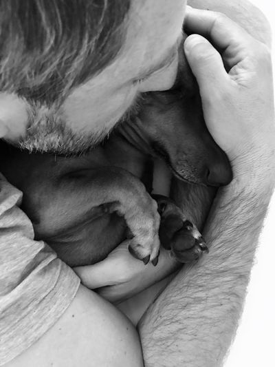 Midsection of man with dog relaxing on hand
