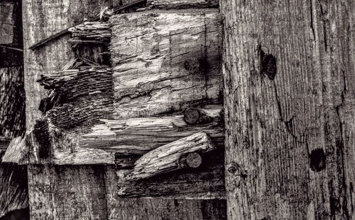 Consciousness Levels Black And White Wood Old Awareness