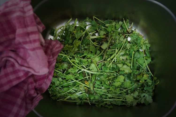 Directly Above Shot Of Coriander In Metal Container