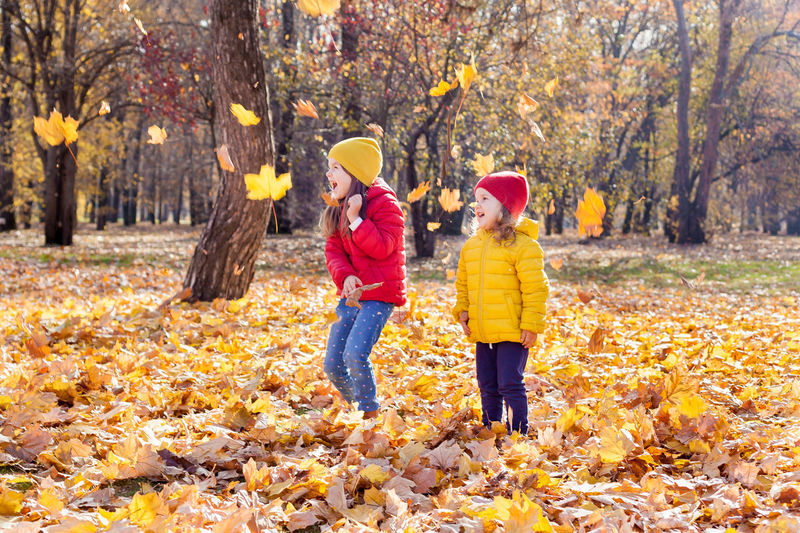 Cute kids standing by trees during autumn