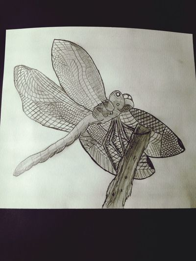 Dragonfly........self made