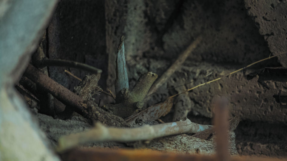 Ancient Traditions Antique Oven Back To The Origins Close-up Day High Angle View Memories Of A Past Family Nature No People Oven Used By My Father's Family Selective Focus Shoted With Canon EOS 750d The Kitchen Of Once Wood - Material Other Perspective