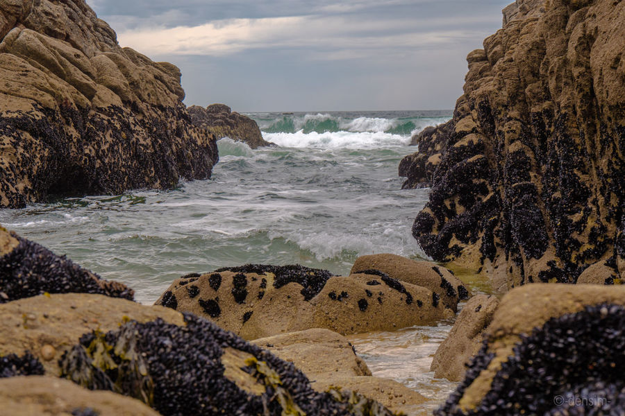 Accrochées au rocher Beach Bretagne Horizon Over Water Moules Mussels Ocean Outdoors Physical Geography Plage Plage 🌴 Sea Seascape Surf Water Wave