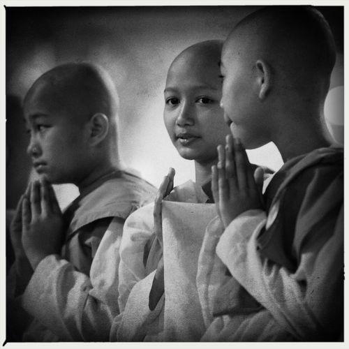 Young female monks at Swedagon Pagoda, Yangon, Myanmar