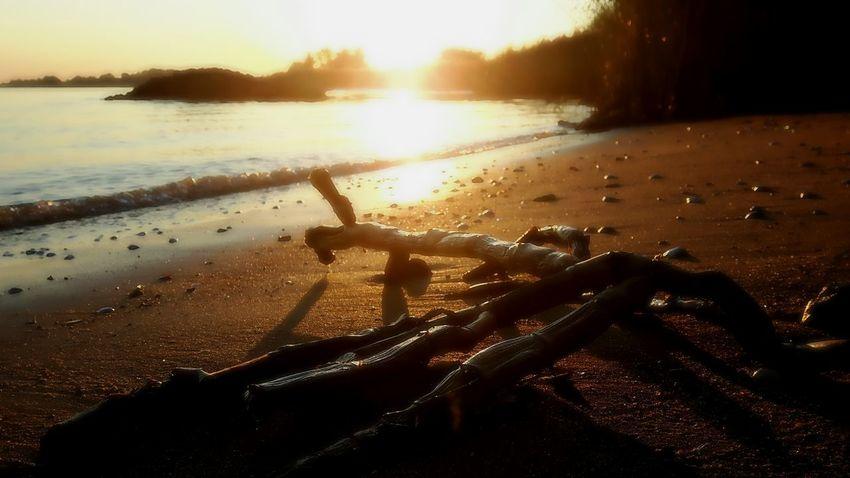 Water Beach Sunset Sunlight Sea Silhouette Sky