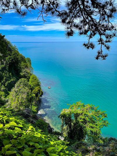 High angle view of sea and trees against sky