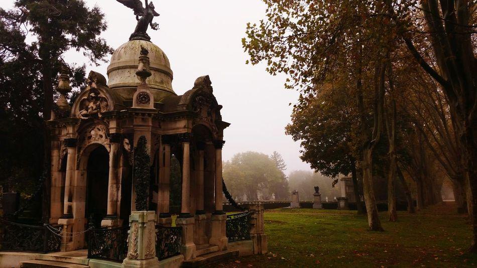 Cemetery_shots Wien Vienna  Silence Foggy Morning