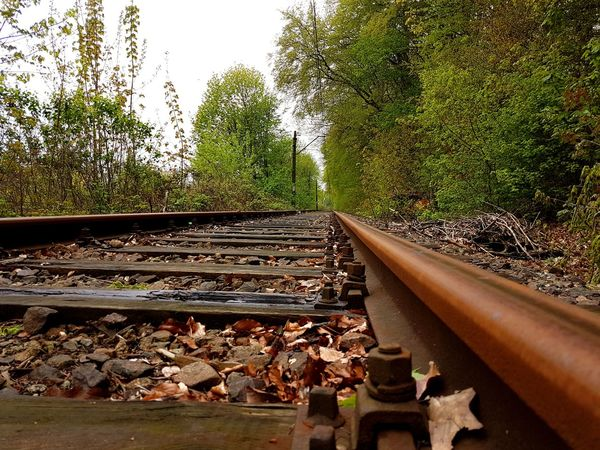 Railroad Track Rail Transportation No People Day Outdoors Tree Abonded Places