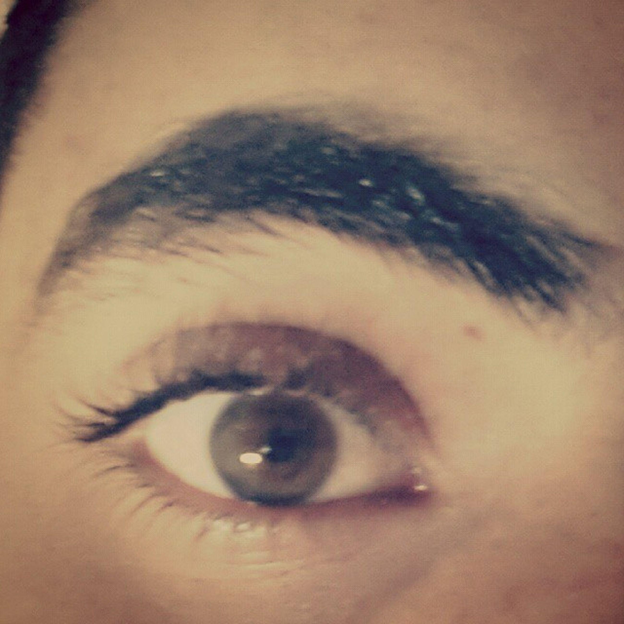 human eye, close-up, indoors, part of, eyelash, eyesight, sensory perception, unrecognizable person, human skin, extreme close-up, cropped, iris - eye, lifestyles, person, extreme close up, eyeball, reflection