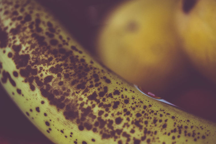 Banana Animal Themes Close-up Day Focus On Foreground Fruit Indoors  No People Yellow