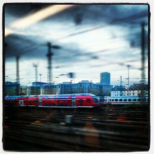 Train in the