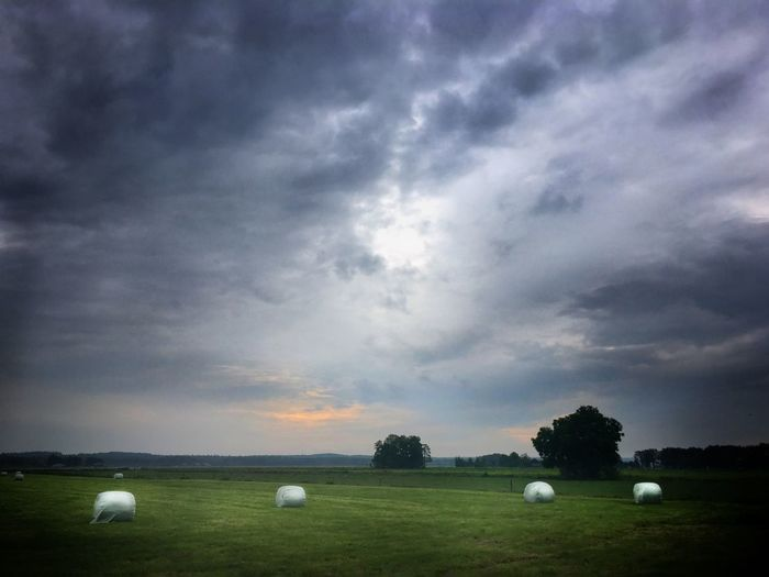 Bales Cloud -
