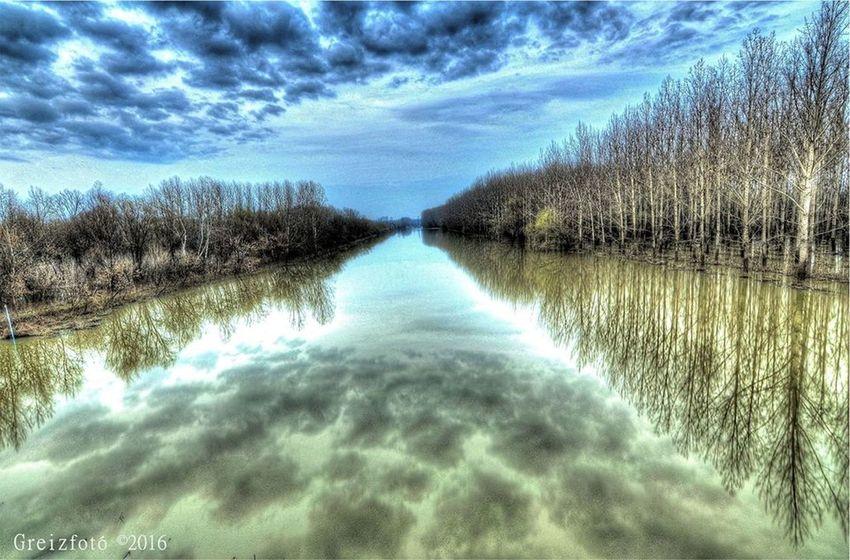 Forrestunderwater Ilovephotography Iloveworld Photooftheday Photooftheweek View Water Water Reflections