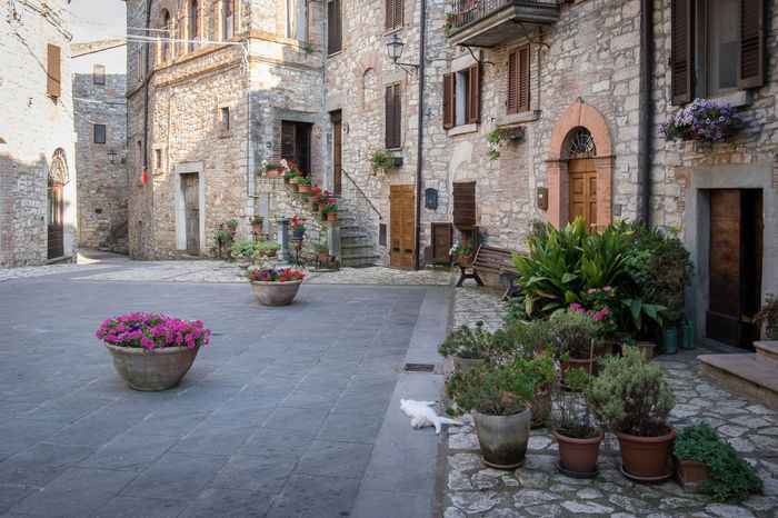 Architecture Building Building Exterior Flower Flower Pot Monti Castello Di Vibio No People Perugia Perugia Italy Potted Plant Residential Building Residential Structure Travel Travel Photography Travelphotography